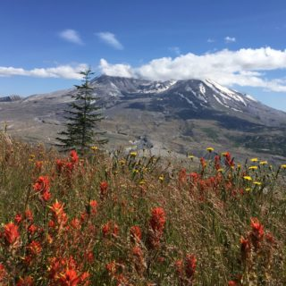 Mount St. Helens: A Backpacking Adventure